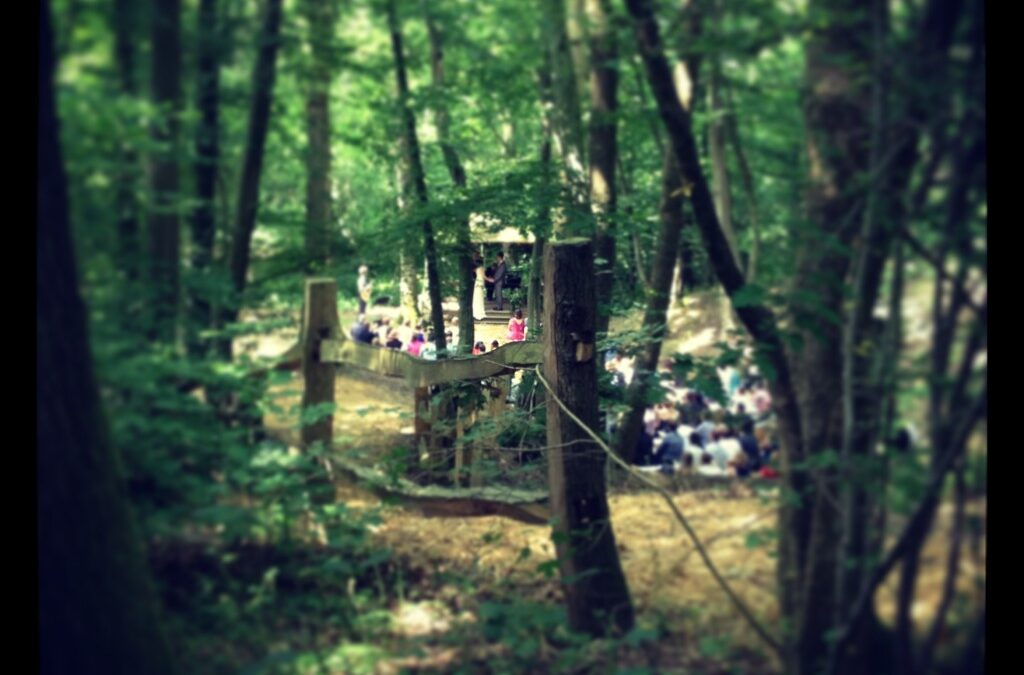 Hold your wedding ceremony 'In the Woods'