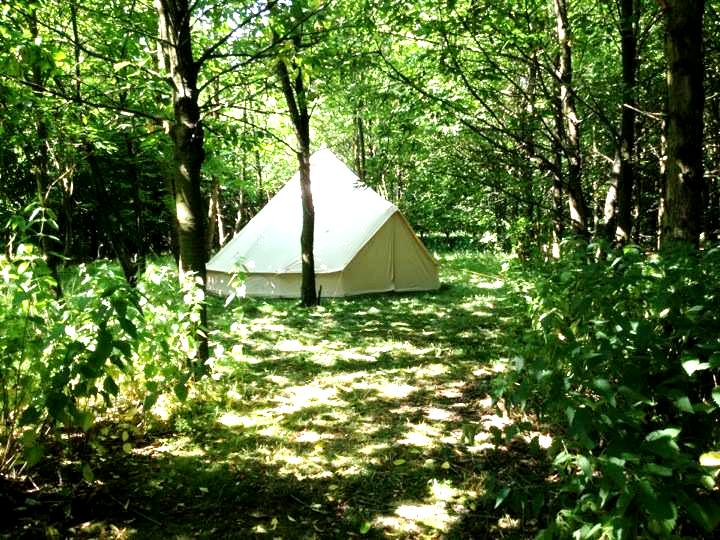 glamping woods