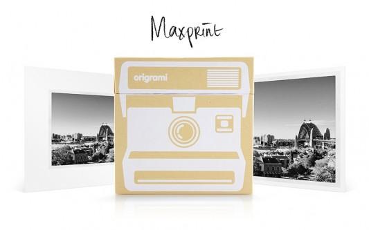 Origrami_Maxprint1