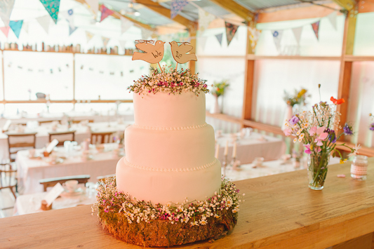 Debs Ivelja Photography fforest wedding-145