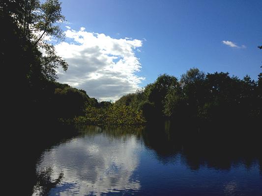 river_533