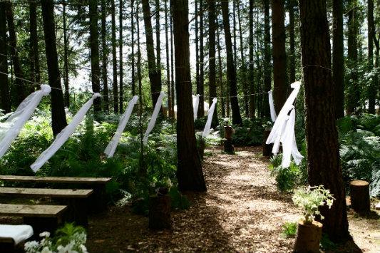 2 Woodland Ceremony - 003 533