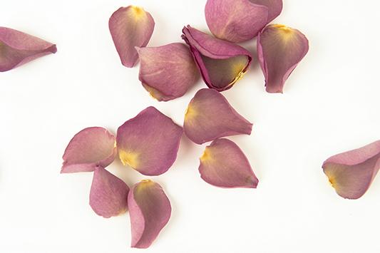 ShropshirePetals.com Delilah Petals £15.95 per litre (2)