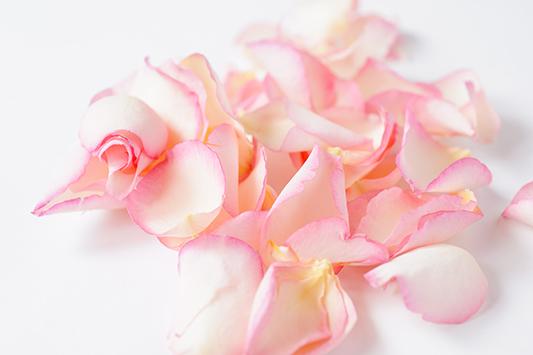 ShropshirePetals.com Promise petals £15.95 per litre (3)
