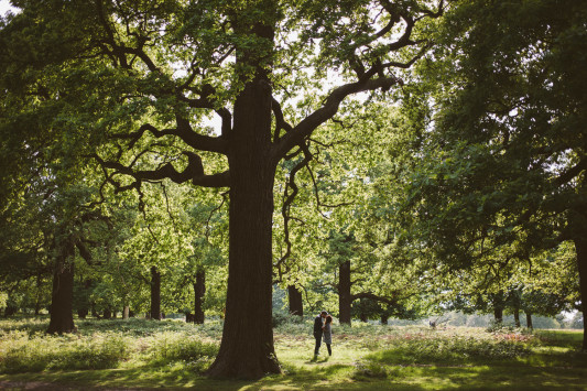 Victoria and Steve's Woodland Engagement Shoot