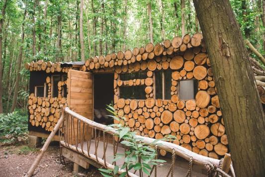 WEB-sized-Squirrel-Woods-Shoot-Heline-Bekker-088
