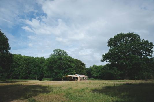 WEB-sized-Squirrel-Woods-Shoot-Heline-Bekker-094