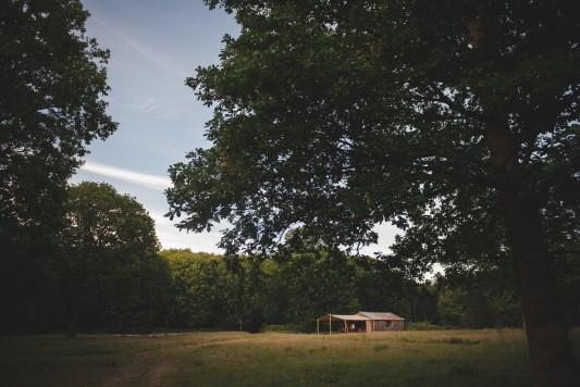 WEB-sized-Squirrel-Woods-Shoot-Heline-Bekker-116