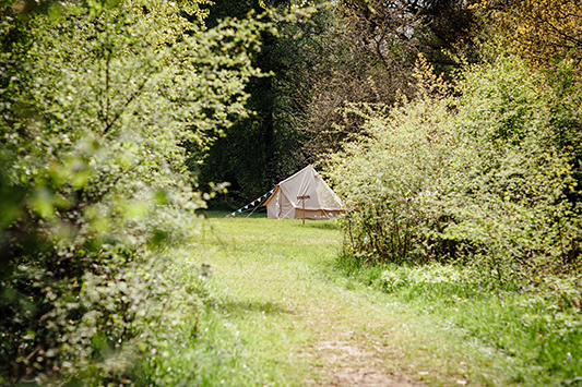 Festival Brides Love: Bears & Butterflies Bell Tent Hire