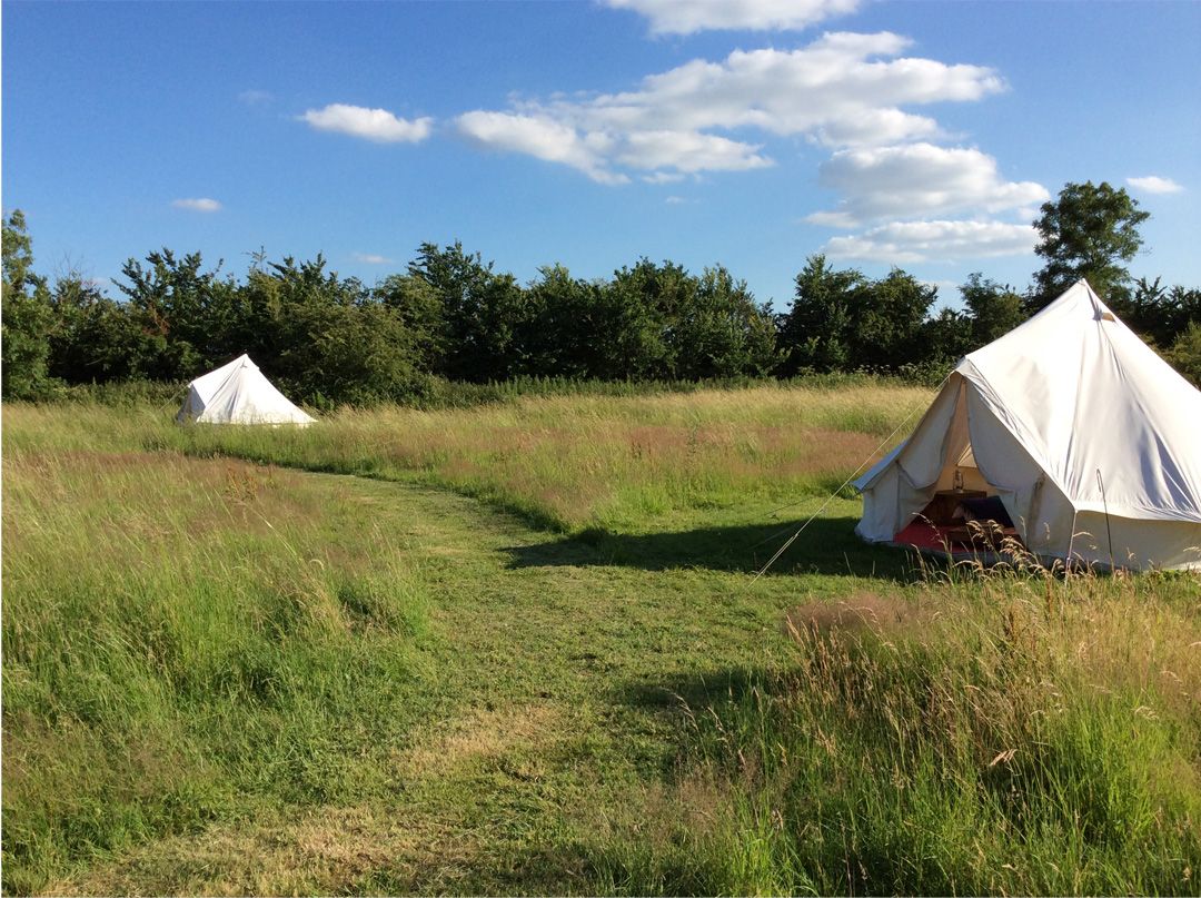 WildWood-Bluebell-Bell-Tents
