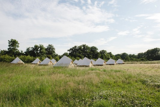 WildWood-Bluebell-Glamping-Field