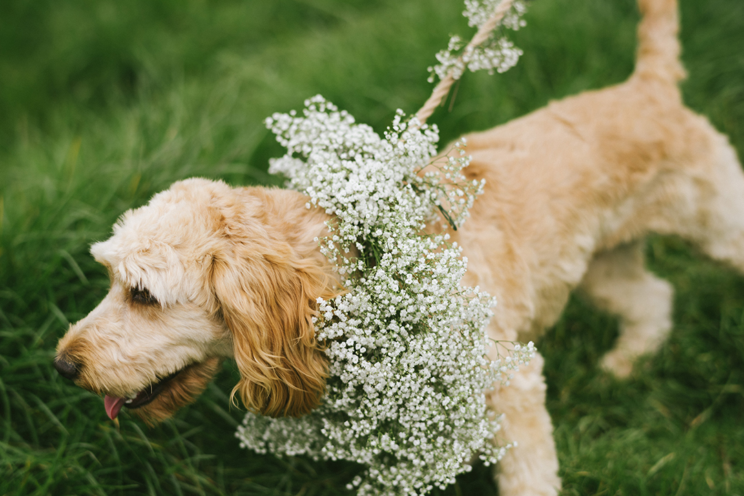 Hurleys styled shoot - Ed Godden Photography-247