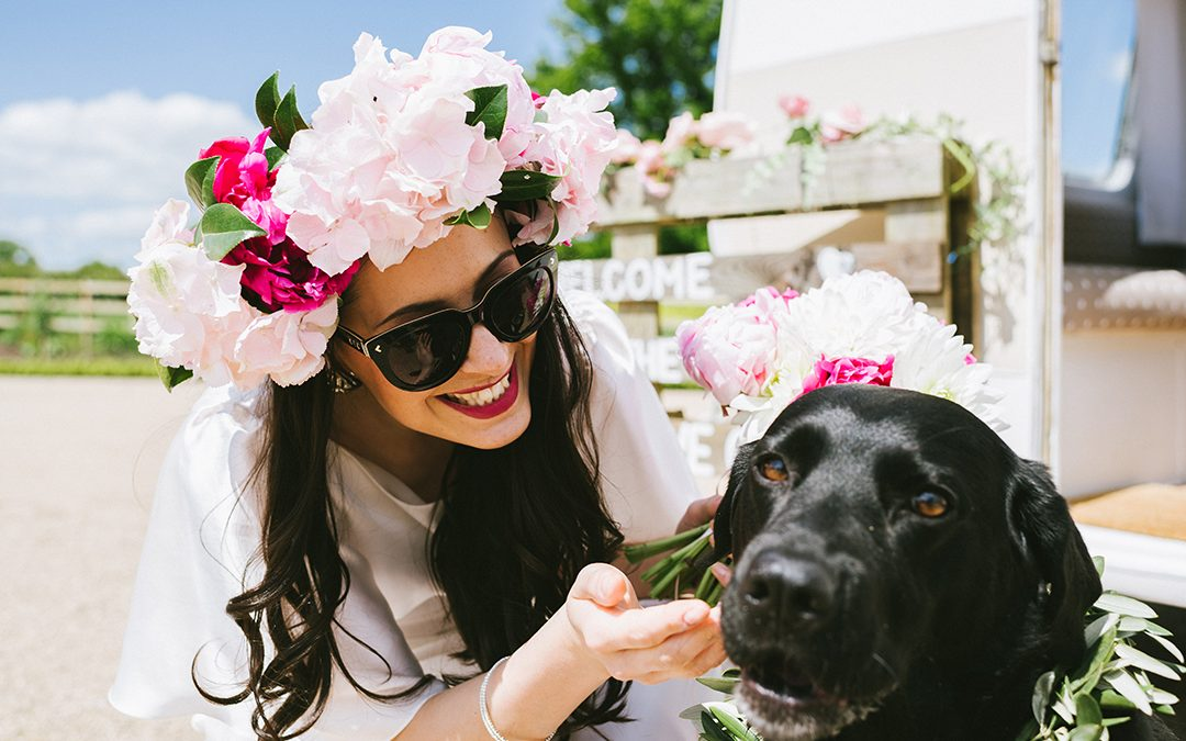 A Dog Lover's Dream – Styled Shoot with Hurley's Wedding Day Dogs